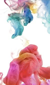 accueil-fumee